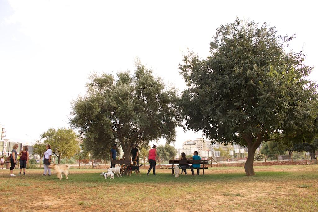 L'area sgambamento cani pubblica più grande d'Italia